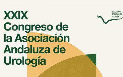 XXIX Congreso AAU 2016