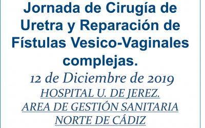 Jornada de Cirugía de uretra y reparación de fístulas vésico-vaginales complejas