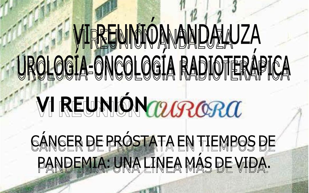 VI Reunión Andaluza Urología-Oncología Radioterápica Aurora